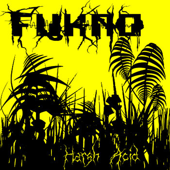 Harsh Acid cover art