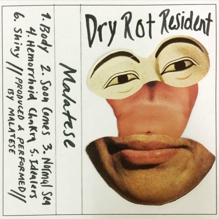 Dry Rot Resident cover art