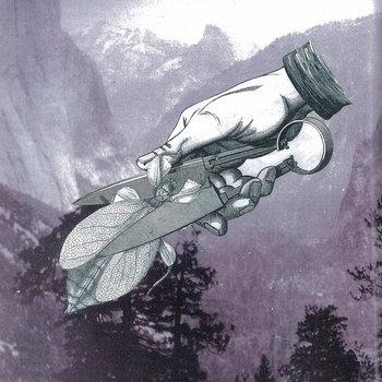 Loosen cover art