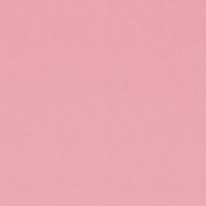 The Pink Album cover art