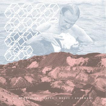 Ex-Breathers / Ovlov / Woozy / Gnarwhal Split cover art