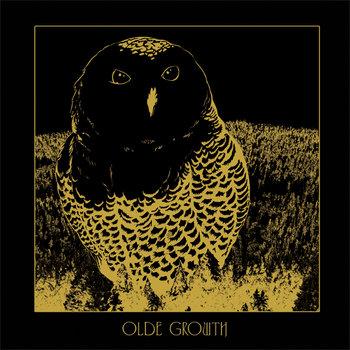 Owl EP cover art