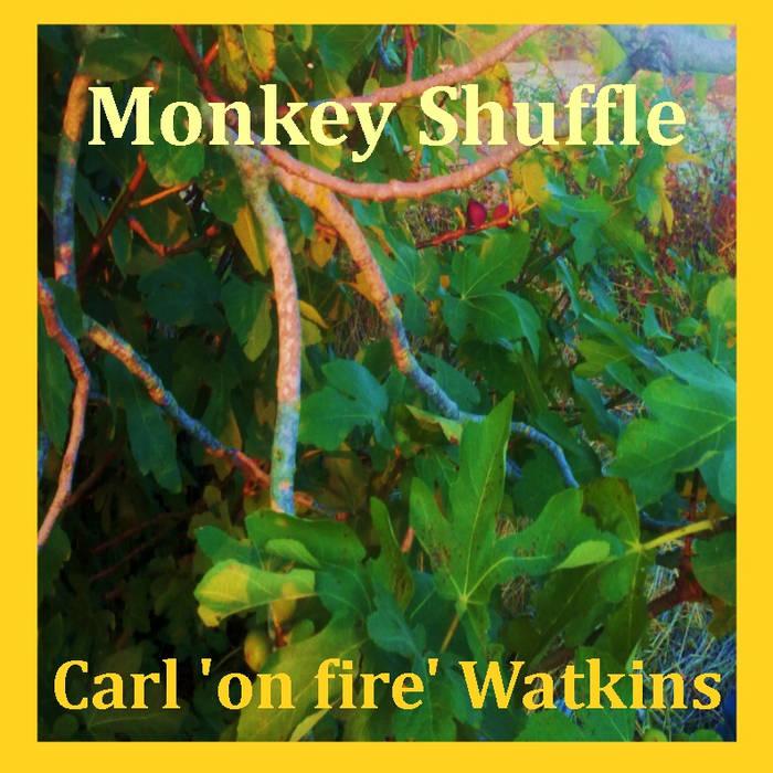 Monkey Shuffle cover art