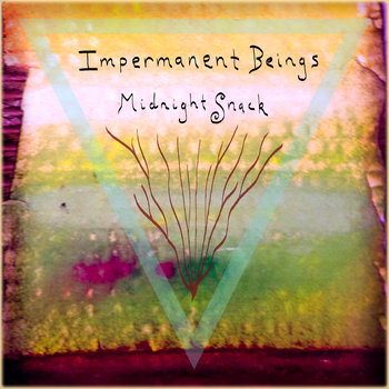 Impermanent Beings cover art