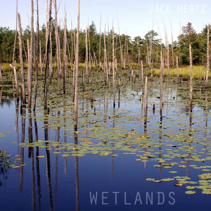 Wetlands cover art