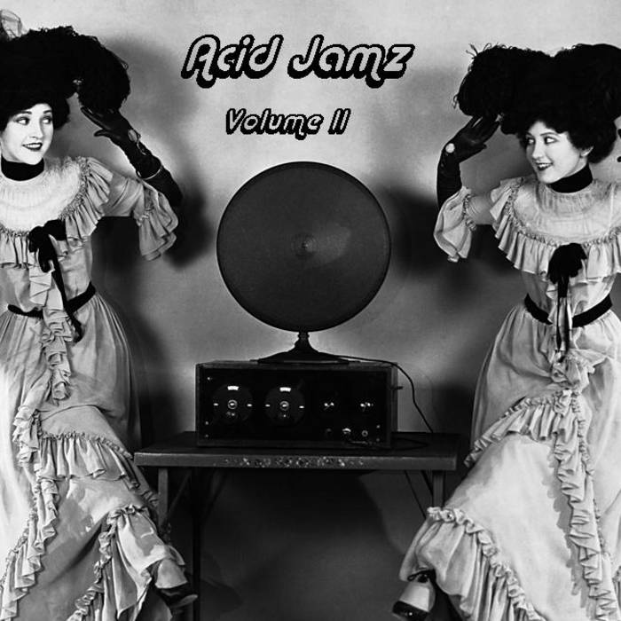 Acid Jamz and Friends: The Radio Show (Acid Jamz Vol. II) cover art