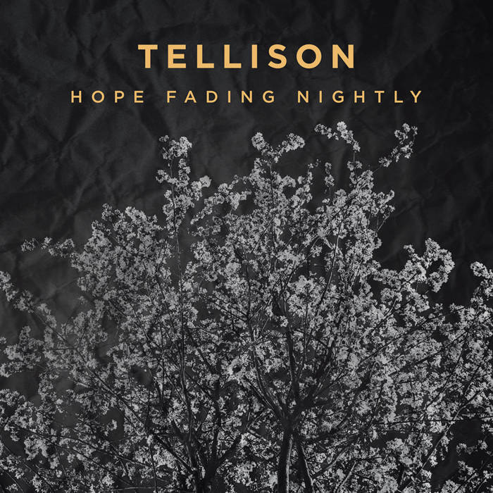 Hope Fading Nightly cover art