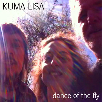 Dance of the Fly cover art
