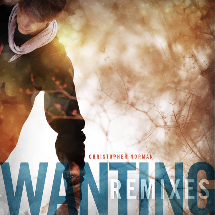 Wanting (Remixes) cover art
