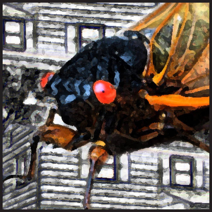 songs of the 17 year cicada cover art