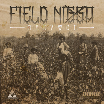 Field Nigga cover art