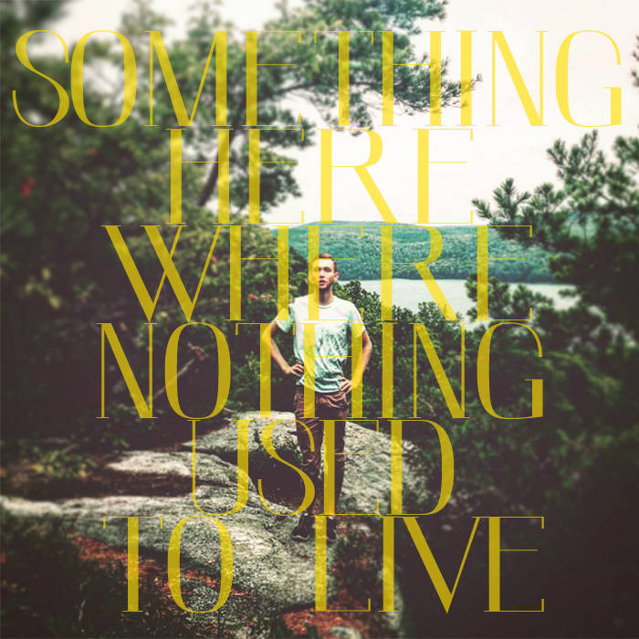 Something Here Where Nothing Used to Live cover art