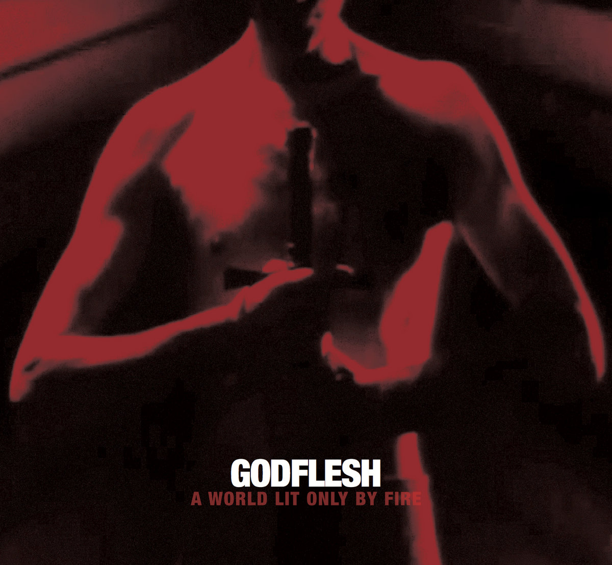 Godflesh - A World Lit Only by Fire (2014)