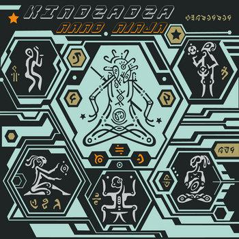 Nano Ninja cover art