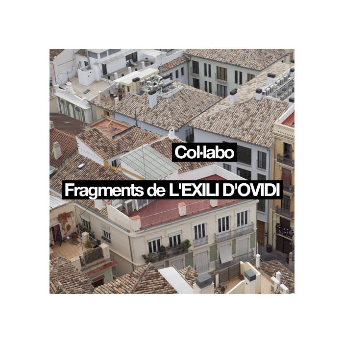 Fragments de L'EXILI D'OVIDI cover art