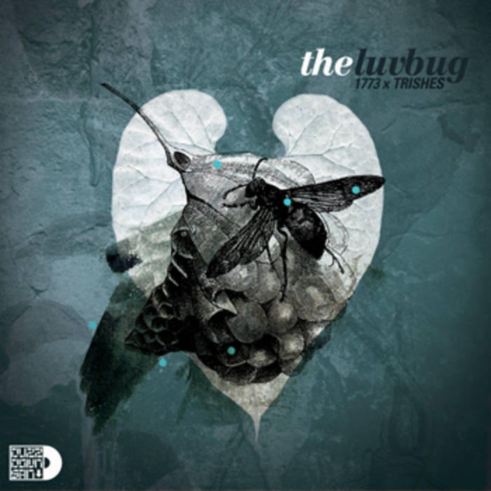 The Luv Bug cover art