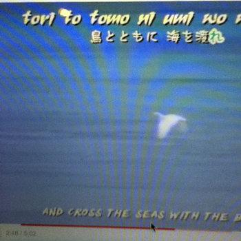 "The Boom - ""Shima Uta"" (Okinawa, Japan) cover art"