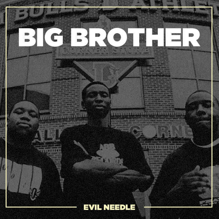 Big Brother ( 2008 ) cover art