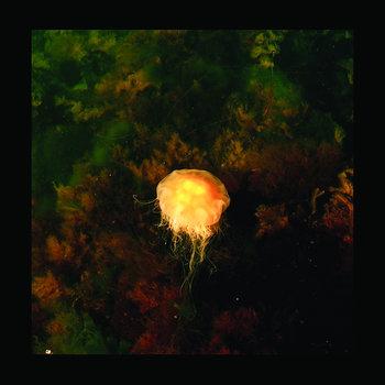 Archipelago matters cover art