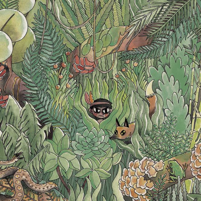 Araucarias cover art