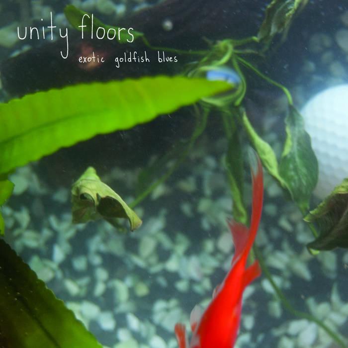 Exotic Goldfish Blues LP cover art