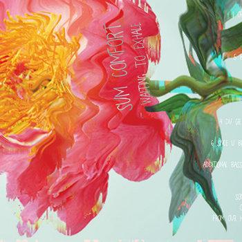 Sum Comfort   Waiting To Exhale (zeon Light 040) cover art