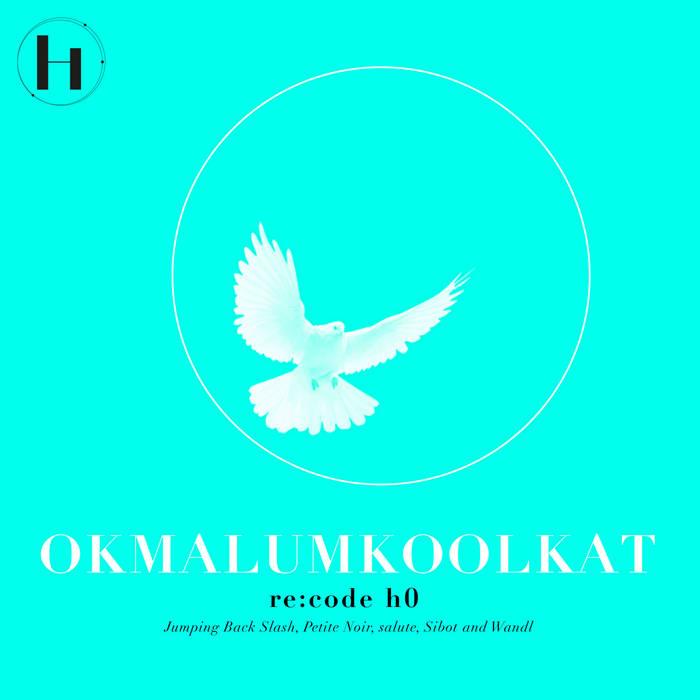 Okmalumkoolkat - re:code H0 cover art