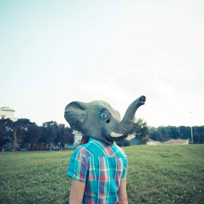 Elephant Song cover art
