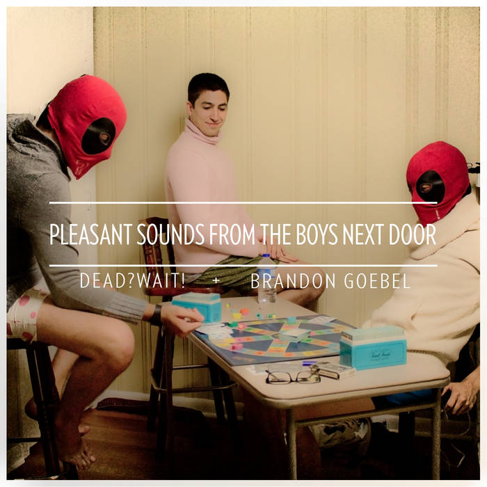 Pleasant Sounds From the Boys Next Door cover art