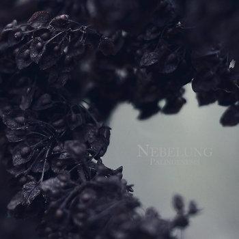 Palingenesis cover art