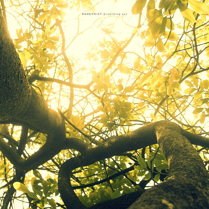 Branching Out cover art