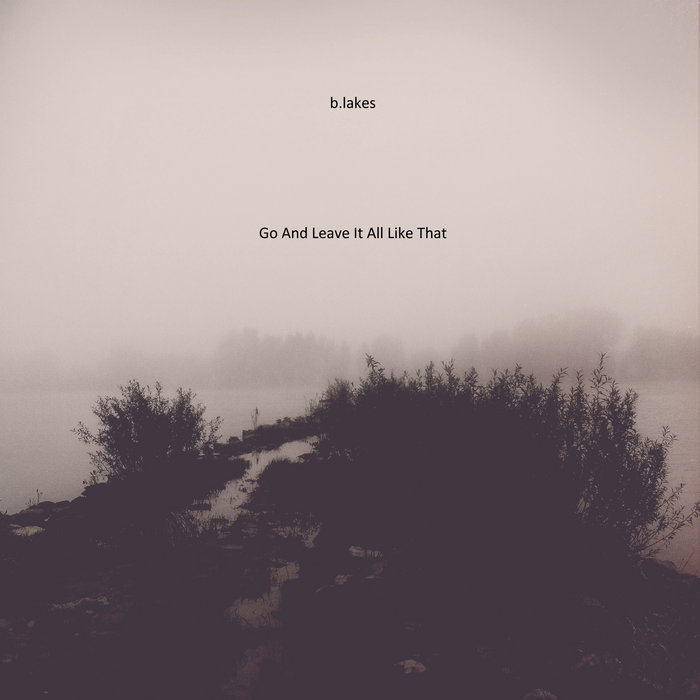Go And Leave It All Like That cover art