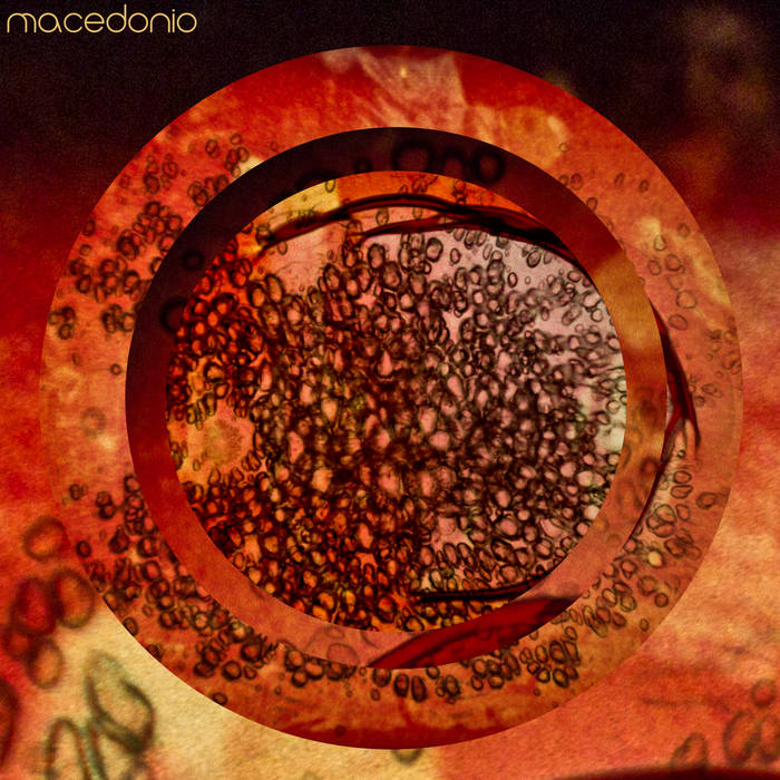 Macedonio cover art