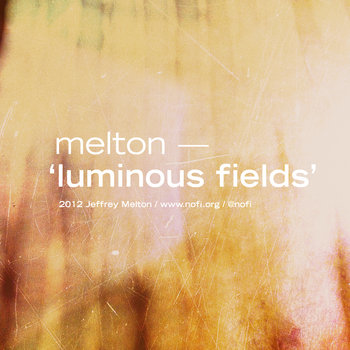 luminous fields cover art