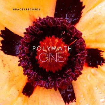 Polymath - One cover art