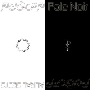 AURAL SECTS / Pale Noir cover art