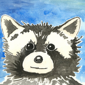 raccoon record cover art