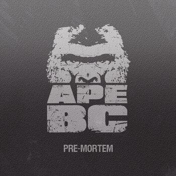 Pre-mortem cover art