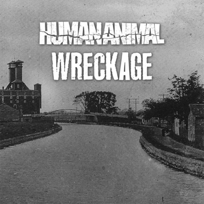 "split 7"" w/ WRECKAGE cover art"