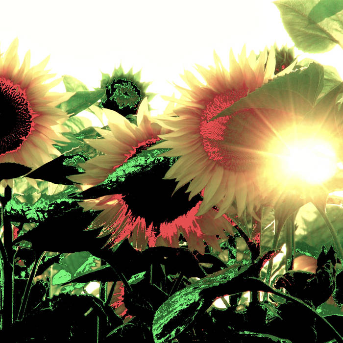 BE the Sun Light cover art