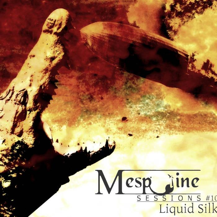 Liquid Silk - live@Mespotine Sessions 10 cover art