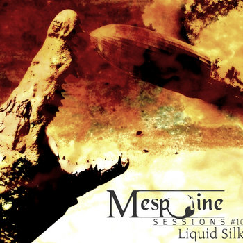 Liquid Silk - live@Mespotine Sessions 10 cover art