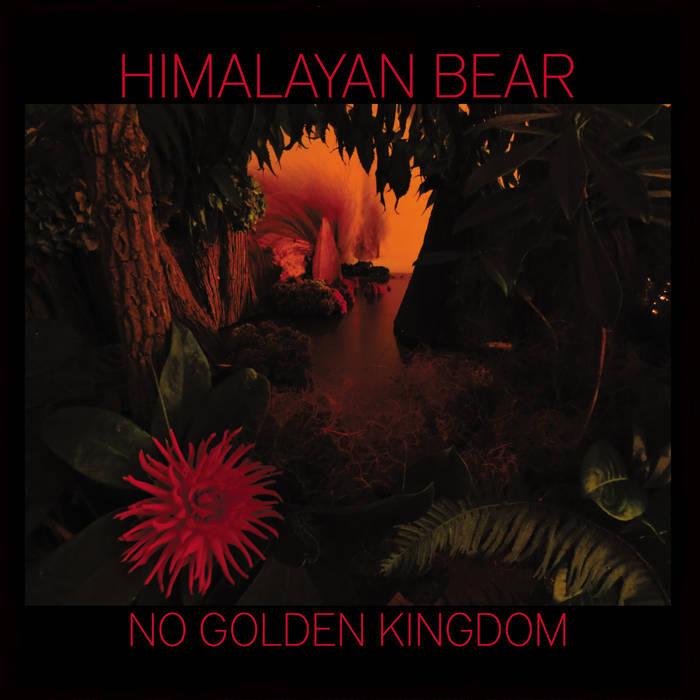 No Golden Kingdom cover art