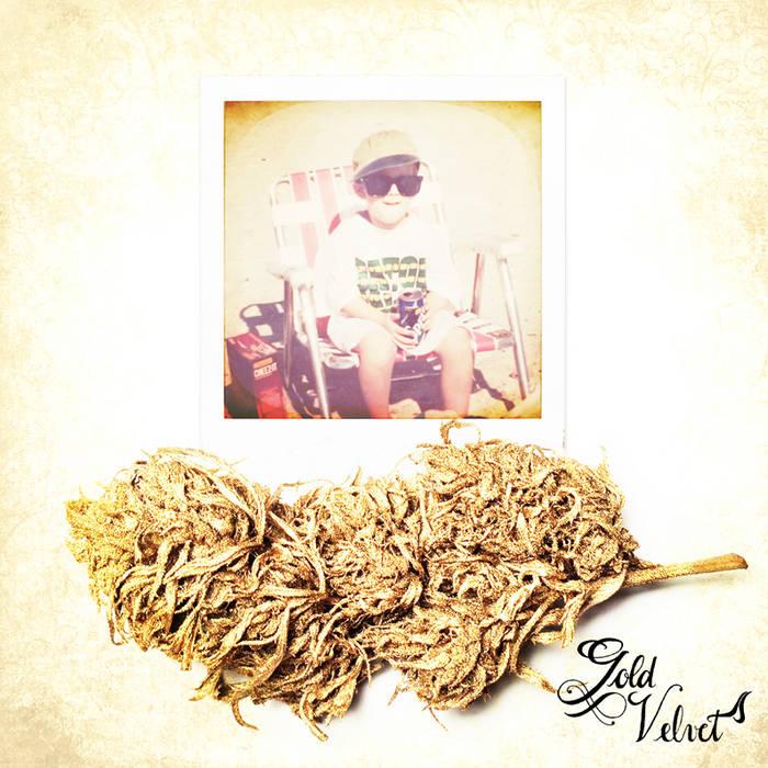Gold Velvet cover art