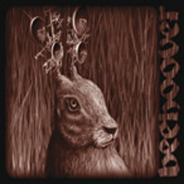 heavy zooo cover art