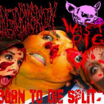 BORN TO DIE SPLIT cover art