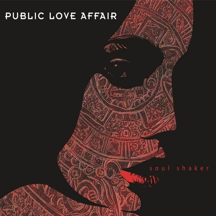 Soul Shaker cover art