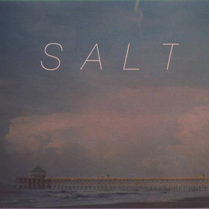 Salt cover art