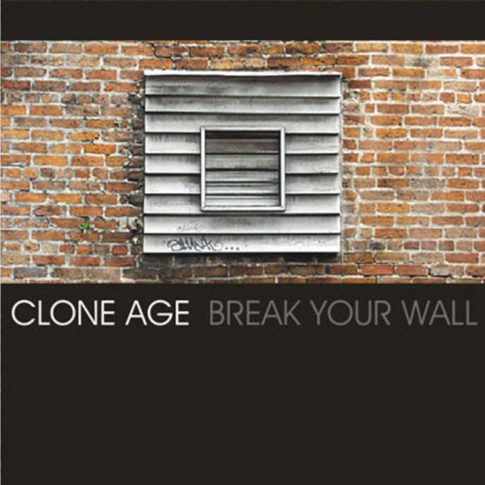 Break your wall cover art