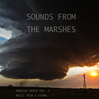 Ambient Marsh Vol. 2 cover art